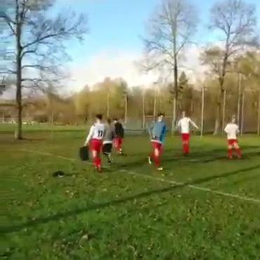 Zangertje op het veld